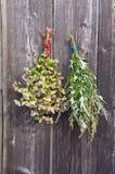 Φαγόπυρο και ιατρική mugwort Artemisia vulgaris δέσμη στον παλαιό τοίχο Στοκ εικόνες με δικαίωμα ελεύθερης χρήσης