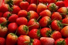 Φαγώσιμος νόστιμος yummy φραουλών Στοκ φωτογραφίες με δικαίωμα ελεύθερης χρήσης