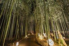 Φανάρι και ελαφρύ φεστιβάλ στην περιοχή Arashiyama Στοκ φωτογραφίες με δικαίωμα ελεύθερης χρήσης