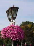 Φανάρι με τα λουλούδια στο πάρκο Στοκ φωτογραφία με δικαίωμα ελεύθερης χρήσης