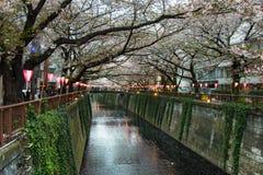 Φανάρι στο φεστιβάλ Sakura στην Ιαπωνία Το φανάρι διαβάζει το φως του Θεού Στοκ Φωτογραφίες