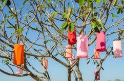 Φανάρι υφάσματος στο δέντρο plumeria Στοκ φωτογραφία με δικαίωμα ελεύθερης χρήσης