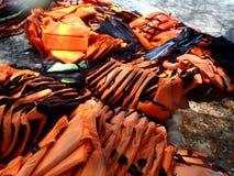 Φανέλλα ζωής (σακάκι) Στοκ Φωτογραφίες