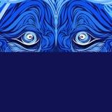 Φανείτε αρπακτικό, μπλε μυστικό υπόβαθρο με τα μάτια λιονταριών, δημιουργικό σχέδιο διανυσματική απεικόνιση