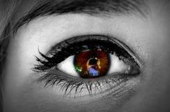 Φανείτε σύνθετη εικόνα στενού επάνω του θηλυκού Στοκ φωτογραφίες με δικαίωμα ελεύθερης χρήσης