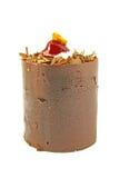φαντασία σοκολάτας κέικ στοκ εικόνες