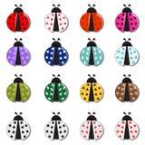 Φαντασία Ladybug Στοκ φωτογραφία με δικαίωμα ελεύθερης χρήσης