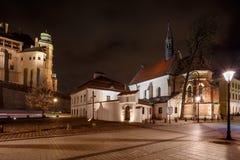 Φανταστική άποψη της νύχτας βασιλικό Wawel Castle, Κρακοβία Στοκ Εικόνα