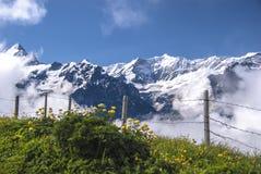 Φανταστική άποψη της σειράς βουνών στοκ εικόνες με δικαίωμα ελεύθερης χρήσης
