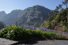 Φανταστική θέα βουνού στη Μαδέρα στοκ εικόνα