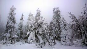 Φανταστικός χειμώνας στα Ουράλια Στοκ Εικόνα