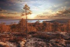 Φανταστικό θερινό ηλιοβασίλεμα στοκ εικόνες