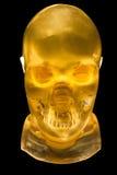 Φανταστικό κεφάλι ακτίνας X Στοκ φωτογραφίες με δικαίωμα ελεύθερης χρήσης