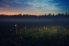Φανταστικό τοπίο θερινού ηλιοβασιλέματος στοκ εικόνες