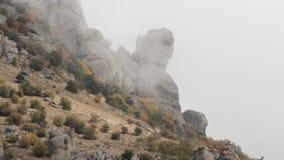 Φανταστικό τοπίο του δάσους βουνών στα σύννεφα, τον πυροβολισμό ομίχλης ή υδρονέφωσης Ρωσία Συγκρατημένο δάσος βουνών φθινοπώρου  απόθεμα βίντεο