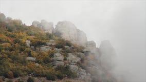 Φανταστικό τοπίο του δάσους βουνών στα σύννεφα, τον πυροβολισμό ομίχλης ή υδρονέφωσης Ρωσία Συγκρατημένο δάσος βουνών φθινοπώρου  φιλμ μικρού μήκους