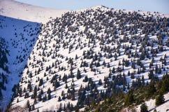 Φανταστικό χειμερινό τοπίο βραδιού δραματικός συννεφιάζω ουρανός Δημιουργικό κολάζ Καρπάθιος, Ουκρανία, Ευρώπη Στοκ Εικόνες