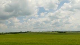 Φανταστικό Cloudscape πέρα από τους πράσινους τομείς απόθεμα βίντεο