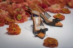 φανταχτερά παπούτσια Στοκ Εικόνες