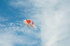 Φανταχτερός διαμορφωμένος ψάρια ικτίνος κυπρίνων που πετά στον μπλε νεφελώδη ουρανό Στοκ Εικόνες