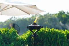 Φανός LIT με την πορτοκαλιά φλόγα στον κήπο που χρησιμοποιείται ως απωθητική ουσία κουνουπιών στοκ εικόνες με δικαίωμα ελεύθερης χρήσης