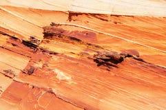 Φαράγγι-πορφυρή αγριότητα απότομων βράχων Paria, Αριζόνα, ΗΠΑ Στοκ Εικόνα