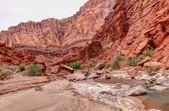 Φαράγγι ποταμών αγριότητα-Paria απότομων βράχων φαράγγι-Vermillion AZ-UT-Paria Στοκ Φωτογραφίες