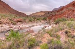 Φαράγγι ποταμών αγριότητα-Paria απότομων βράχων φαράγγι-Vermillion AZ-UT-Paria Στοκ φωτογραφία με δικαίωμα ελεύθερης χρήσης
