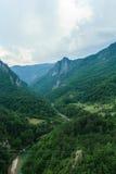 Φαράγγι ποταμών της Tara Μαυροβούνιο Στοκ Φωτογραφία