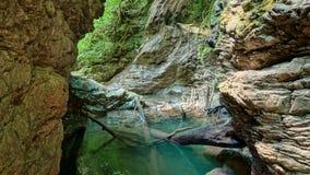 Φαράγγι του ποταμού στο άλσος yew-πυξαριού στοκ φωτογραφίες
