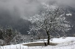 Φαράγγι του ποταμού Iskar, κοντά σε Svoge, Βουλγαρία - χειμερινή εικόνα Στοκ εικόνα με δικαίωμα ελεύθερης χρήσης