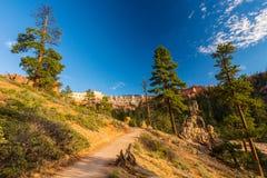 Φαράγγι του Bryce, Γιούτα, τοπίο προοπτικής το φθινόπωρο στην ανατολή Στοκ Εικόνα