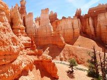 Φαράγγι του Bryce - ΗΠΑ Αμερική στοκ φωτογραφίες