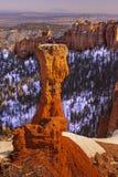 Φαράγγι του Bryce Στοκ εικόνα με δικαίωμα ελεύθερης χρήσης