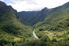 Φαράγγι του montenegrian ποταμού της Tara και της θαυμάσιας κοιλάδας του Στοκ Εικόνες