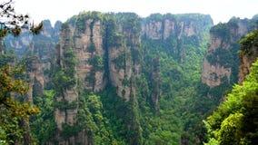 Φαράγγι φαραγγιών βουνών στο καταπληκτικό πάρκο Zhangjiajie με τις στήλες και τους βράχους πετρών φιλμ μικρού μήκους