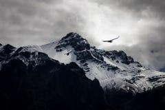 Φαράγγι Colca στοκ φωτογραφία με δικαίωμα ελεύθερης χρήσης
