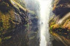 Φαράγγι Kamnitz στο σαξονικό εθνικό πάρκο της Ελβετίας Στοκ εικόνα με δικαίωμα ελεύθερης χρήσης