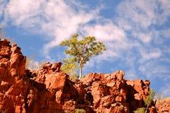 Φαράγγι Ormiston, εθνικό πάρκο δυτικού MacDonell στοκ φωτογραφία με δικαίωμα ελεύθερης χρήσης
