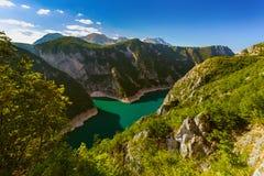 Φαράγγι Piva - Μαυροβούνιο Στοκ Εικόνες