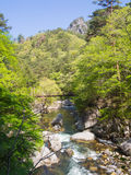 Φαράγγι Shosenkyo φρέσκο σε πράσινο σε Kofu, Yamanashi, Ιαπωνία στοκ φωτογραφία με δικαίωμα ελεύθερης χρήσης