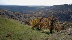 Φαράγγι Souteska στους λόφους Palava Στοκ Εικόνα