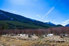 Φαράγγι Sundance Banff στοκ εικόνες
