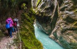 Φαράγγι Tolmin, φύση, Σλοβενία στοκ εικόνες