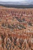 φαράγγι unsurpassed Utah ομορφιάς bryce Στοκ Εικόνες