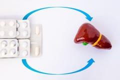 Φαρμακολογική θεραπεία αντικατάστασης θεραπείας, ενζύμων, χολών ή ορμονών των ασθενειών του συκωτιού ή του χολικού κομματιού Αριθ Στοκ Φωτογραφίες