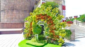 Φασιανός λουλουδιών Στοκ Φωτογραφίες