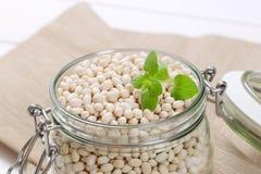 φασολιών ακατέργαστο λευκό οσπρίων τροφίμων υγιές στοκ εικόνες με δικαίωμα ελεύθερης χρήσης