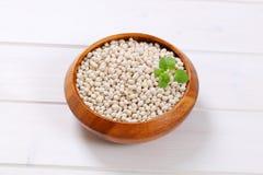 φασολιών ακατέργαστο λευκό οσπρίων τροφίμων υγιές στοκ εικόνα