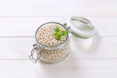 φασολιών ακατέργαστο λευκό οσπρίων τροφίμων υγιές στοκ εικόνες